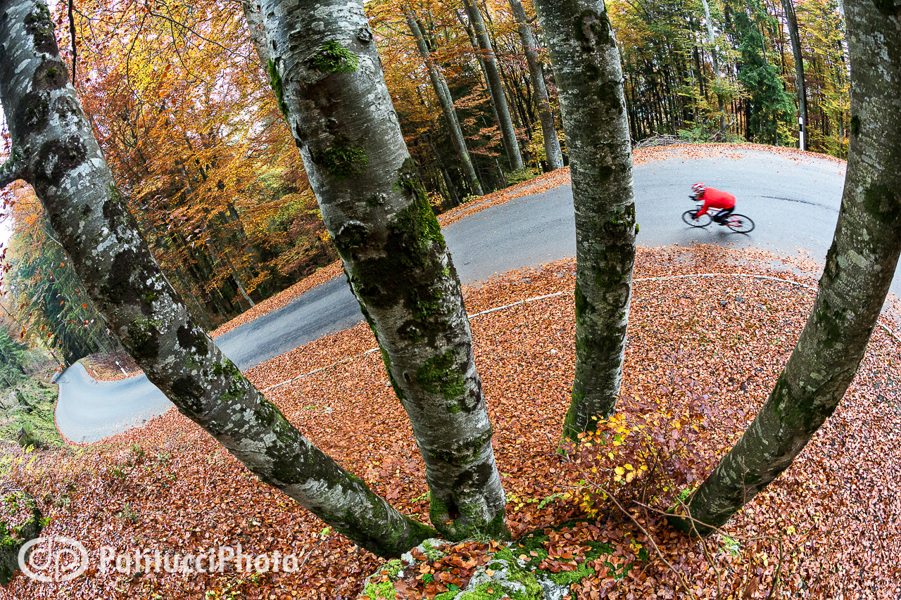 Road biking in fall colors